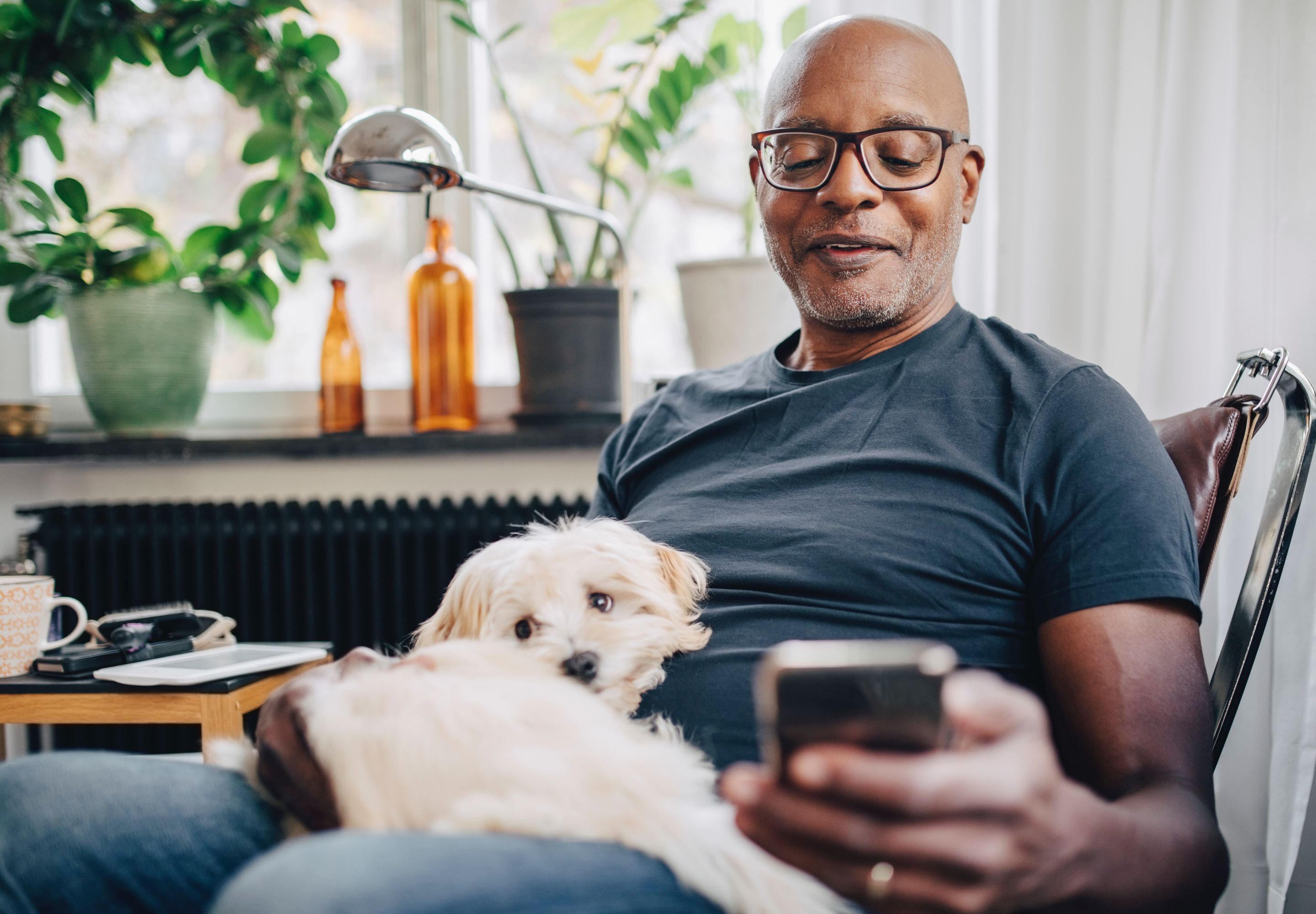 man looking at phone with white small dog on his lap